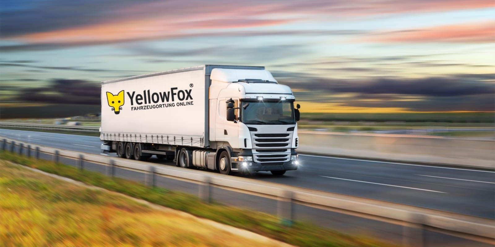 News_YellowFox